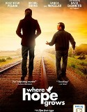 Where Hope Grows (2014) Online Subtitrat in Romana