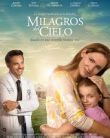 Miracles from Heaven 2016 subtitrat în Român?