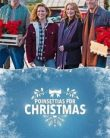Poinsettias for Christmas (2018) online subtitrat in romana
