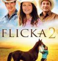 Flicka 2 online subtitrat in romana
