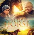 Orphan Horse online subtitrat in romana